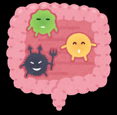 腸内環境を知る簡単な方法は・・
